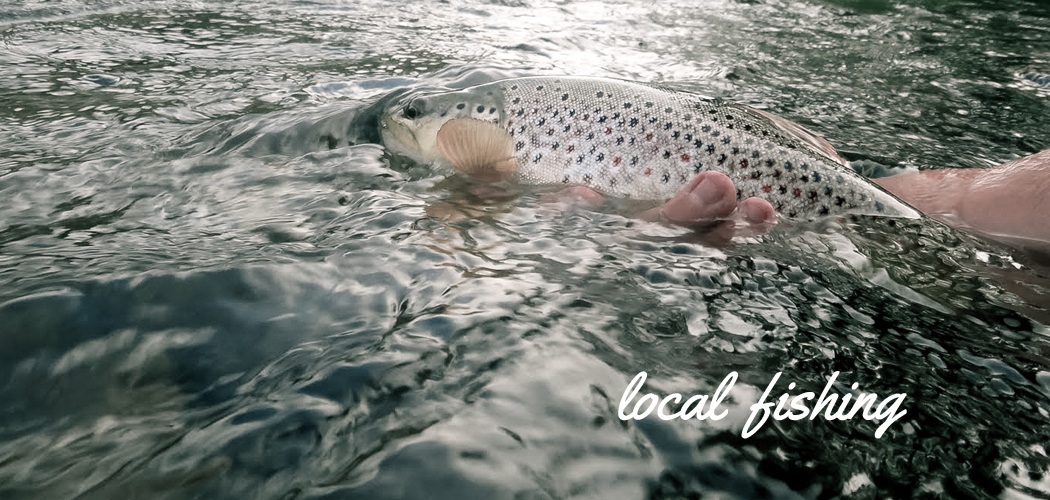 Reno fly shop northern nevada fly fishing outfitters for Fly fishing nevada