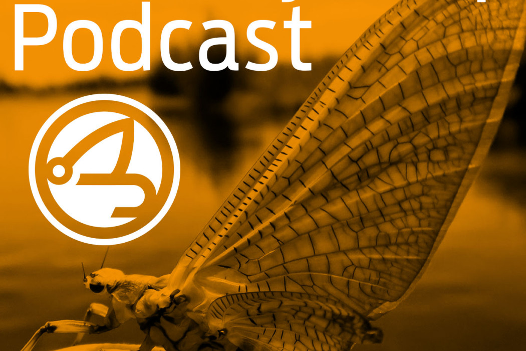 rfs_podcast_orange