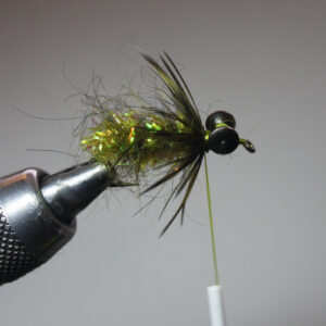 Step 7: 2-3 wraps with hackle feather behind eyes. Tie off with three wraps of thread.