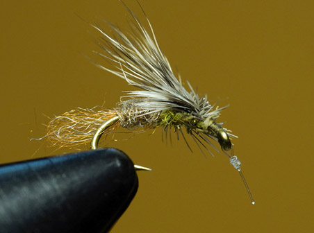 E/C Caddis tied and fished by Ralph Cutter