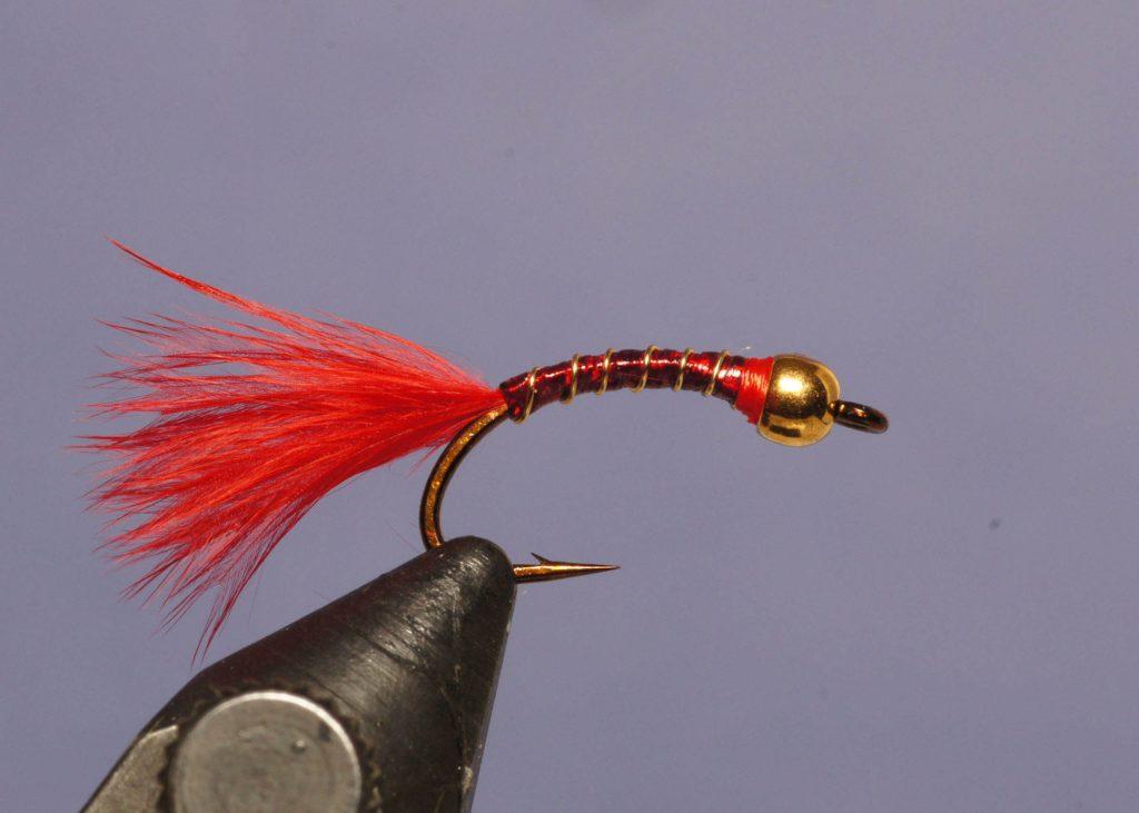 Holo worm (blood midge larva)