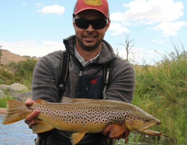 Truckee River Brown Trout 2016