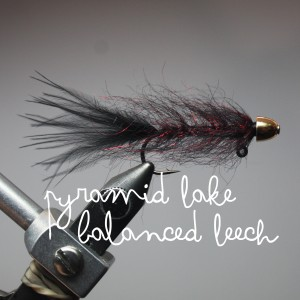 Jan's Balanced Leech (mimicflyfishing.com)
