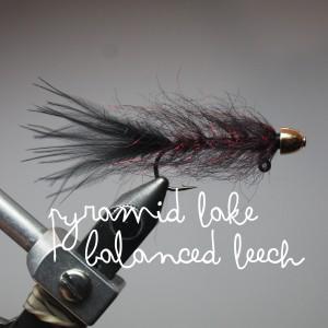 Jan's Balanced Leech (mimicflyfishing.com)