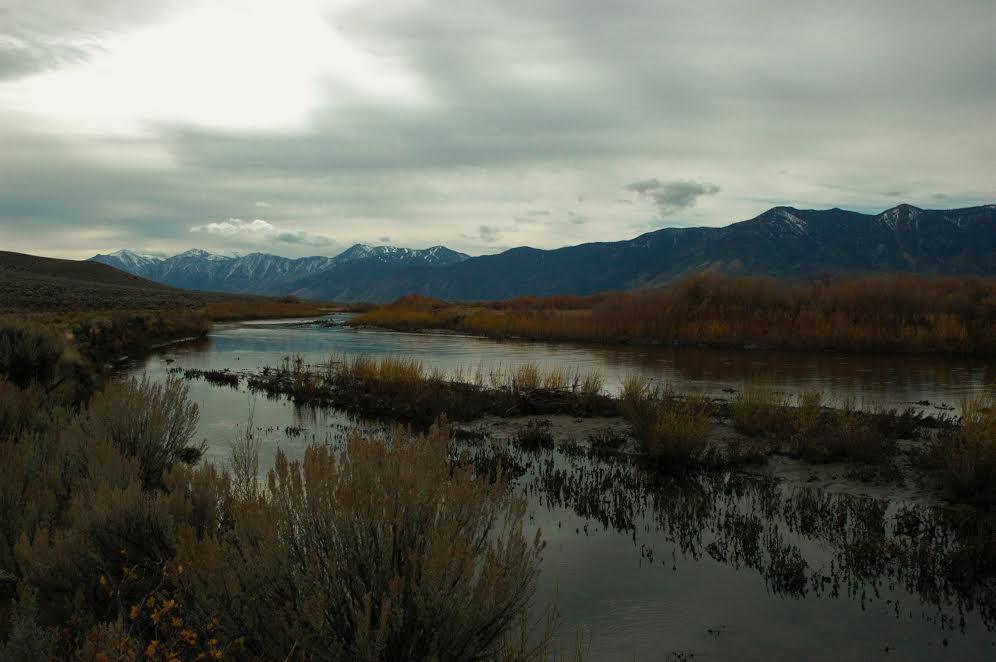 Carson River[641]