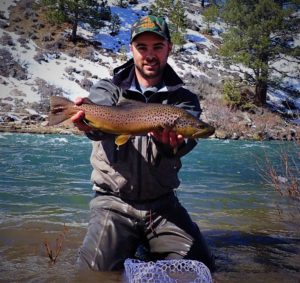 A CA Truckee River resident Brown Trout