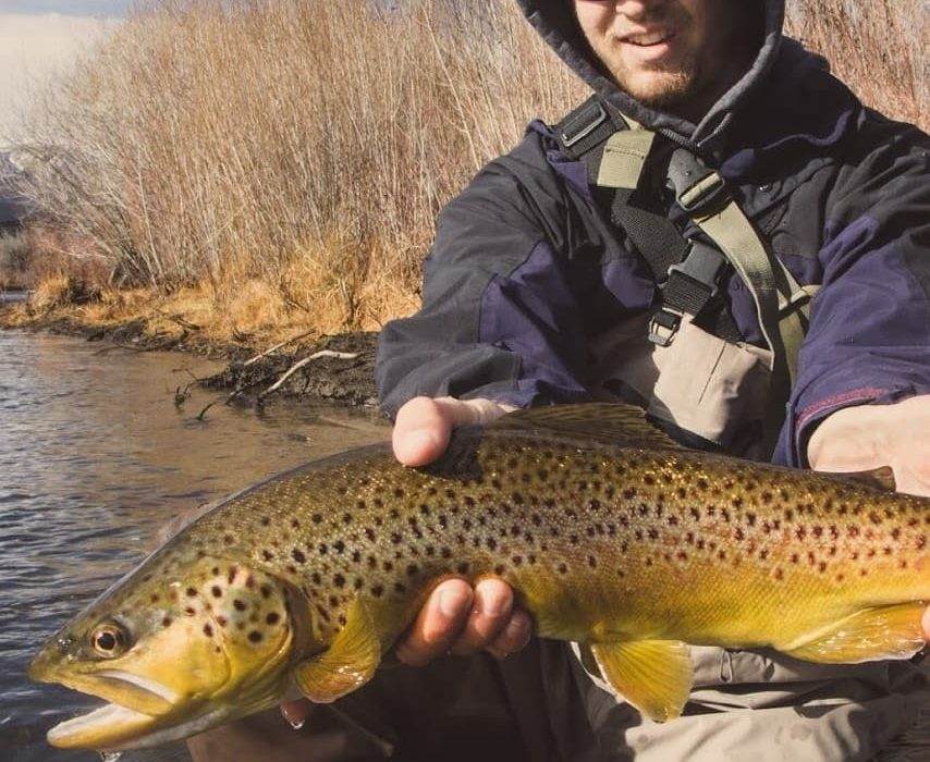 Reno fly shop fly fishing report truckee river and for Truckee fishing report
