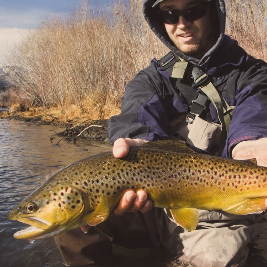 Reno fly shop fly fishing report truckee river and for Pyramid lake fishing report