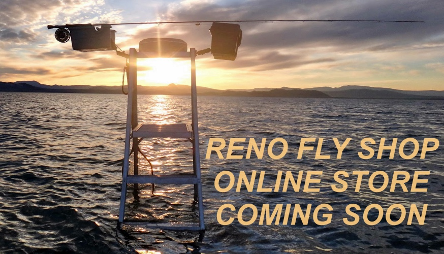 separation shoes ef67d e74e7 Pyramid Lake Ladder COMING SOON - Reno Fly Shop | Northern ...
