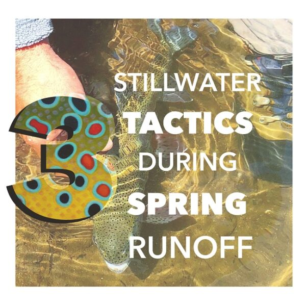 3 Stillwater Tactics during Spring runoff